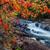 çağlayan · kırmızı · yaprakları · çerçeve · güzel - stok fotoğraf © jameswheeler