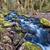природного · пород · мох · старые · свежие · зеленый - Сток-фото © jameswheeler
