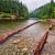 Log Locked Shores stock photo © jameswheeler