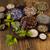 świeże · zioła · muzyka · vintage - zdjęcia stock © janpietruszka
