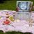 picknickmand · gezonde · voeding · brood · vers · fruit · wijn · glas - stockfoto © janpietruszka