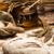 áru · kenyér · étel · háttér · vacsora · tojások - stock fotó © JanPietruszka