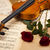 red roses violin stock photo © janpietruszka