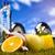 健身 · 食品 · 綠草 · 健康 · 能源 · 脂肪 - 商業照片 © janpietruszka