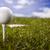golf · topu · kullanılmış · karanlık · çim · golf - stok fotoğraf © janpietruszka