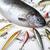 лет · рыбалки · природного · продовольствие · природы · реке - Сток-фото © janpietruszka