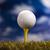 golflabda · naplemente · zöld · fű · égbolt · sport · tájkép - stock fotó © janpietruszka