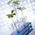 biyoteknoloji · kimyasal · laboratuvar · züccaciye · biyo · organik - stok fotoğraf © JanPietruszka