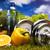 zielona · trawa · fitness · zdrowia · mięśni · tłuszczu · świeże - zdjęcia stock © janpietruszka