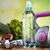 egészséges · étkezés · vitaminok · diétázás · közelkép · tabletta · néhány - stock fotó © janpietruszka