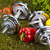 vitamin and fitness diet dumbell in green grass stock photo © janpietruszka