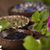 medicina · alternativa · secas · ervas · naturalismo · médico · natureza - foto stock © janpietruszka