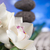 orchid flower zen stones stock photo © janpietruszka