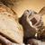 válogatás · sült · kenyér · hagyományos · étel · háttér - stock fotó © JanPietruszka