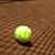 sport tennis racket and balls stock photo © janpietruszka