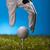 стороны · мяч · для · гольфа · гольф · клуба · закат · газона - Сток-фото © JanPietruszka