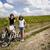donna · bike · estate · tempo · libero · ragazza · strada - foto d'archivio © JanPietruszka