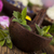 świeże · zioła · pielęgnacja · skóry · lawendy · aloesu · liści - zdjęcia stock © janpietruszka