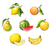 акварель · иллюстрация · груши · аннотация · фрукты · фон - Сток-фото © jara3000