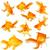 美しい · 金魚 · 孤立した · 白 · 熱帯 - ストックフォト © jarenwicklund