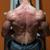genç · erkek · vücut · geliştirmeci · ağır · ağırlık - stok fotoğraf © jasminko