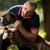 férfi · tart · kutya · alacsony · kulcs · portré - stock fotó © jasminko