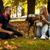 bir · genç · köpek · oturma · çim · portre - stok fotoğraf © jasminko