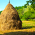 Close-up of a single big haystack near forest stock photo © jaycriss