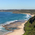 outono · Austrália · moço · dourado · campo - foto stock © jeayesy