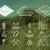 conjunto · verão · montanha · acampamento · distintivo · logotipo - foto stock © jeksongraphics