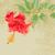 kırmızı · ebegümeci · çiçek · tropikal · bitki · moda - stok fotoğraf © jet