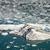 ijsberg · oceaan · Blauw · opwarming · van · de · aarde · water - stockfoto © jirivondrous