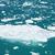 氷山 · 腕 · 水 · 風景 · 雪 - ストックフォト © jirivondrous