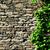 starych · mur · bluszcz · tekstury · jesienią · roślin - zdjęcia stock © jirkaejc