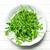 folhas · prato · natureza · folha · salada · alimentação - foto stock © jirkaejc