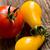 various tomatoes stock photo © jirkaejc