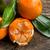 friss · organikus · hámozott · mandarin · gyümölcs · levelek - stock fotó © jirkaejc
