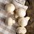 champignon · gombák · fa · asztal · öreg · csoport · élet - stock fotó © jirkaejc