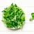 кукурузы · Салат · салата · Top · мнение · группа - Сток-фото © jirkaejc
