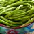 frescos · ejotes · tazón · alimentos · grupo · cocina - foto stock © jirkaejc