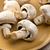 button mushrooms on plate stock photo © jirkaejc