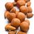 grup · kahverengi · yalıtılmış · beyaz · soyulmuş - stok fotoğraf © jirkaejc