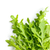 fresco · folhas · branco · natureza · folha · fundo - foto stock © jirkaejc
