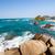 praia · parque · belo · turquesa · água - foto stock © jkraft5