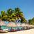 ヤシの木 · リラックス · カリビアン · 海岸 · 森林 - ストックフォト © jkraft5
