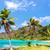 üç · palmiye · ağaçları · Panama · yukarı · turkuaz · caribbean - stok fotoğraf © jkraft5