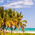 tres · palmeras · Caribe · parque · Colombia · mar - foto stock © jkraft5