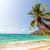 playa · palmera · arena · blanca · hermosa · Panamá - foto stock © jkraft5