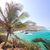 parque · praia · idílico · tropical · caribbean - foto stock © jkraft5