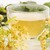 hárs · tea · üveg · citrus · díszített · koszorú - stock fotó © joannawnuk